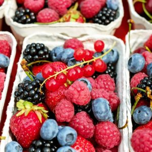 Plants de petits fruits, fruits rouges